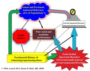 Links between FASD and criminal behavior